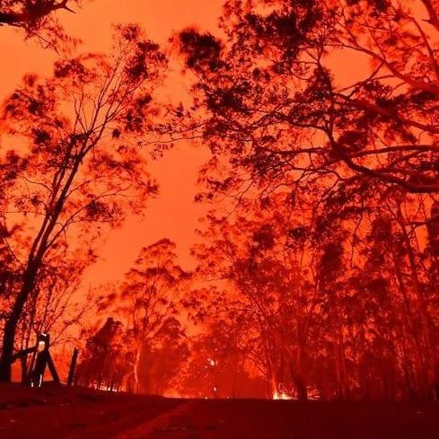 Bushfires close to Mallacoota
